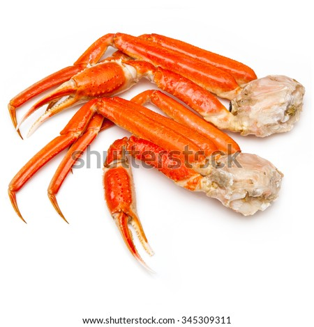 Snow crab (Chionoecetes opilio) or Tanner crab clusters isolated on a white studio background.