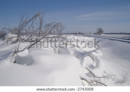 snow drifts and ice covered weeds