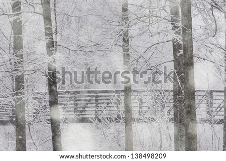 Snow falling in a forrest and a walking bridge, Stowe, Vermont, USA - stock photo