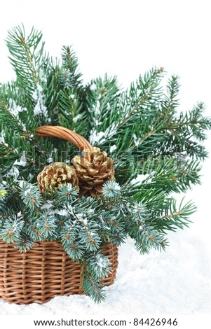 Snow fir branches with cones in a wicker basket. - stock photo