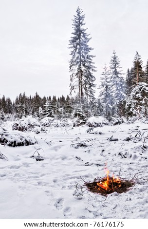Snow, forest and fire. In the forest. The winter around and only campfire lets survive tough time. - stock photo