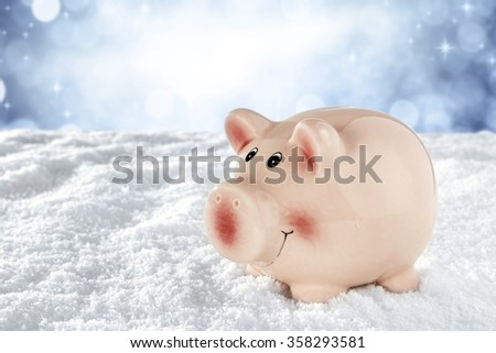 snow frost and pig on top  - stock photo