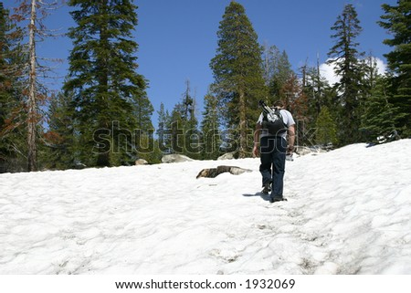 Snow Hiker - Sentinel Dome