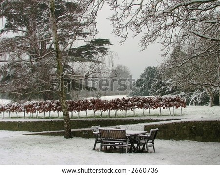 Snow in the Park - stock photo