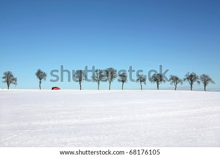 Snow landscape - tree line with a passing red car in a sunny winter day - suitable for banner (copyspace), foreground can be cut more by designers - stock photo