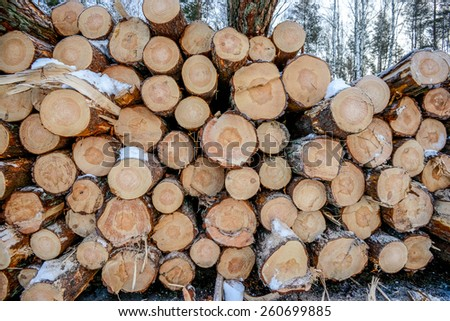 Snow log stack lumber in winter . - stock photo