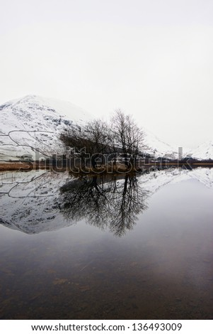 Snow mountain and tree reflection in a river - stock photo