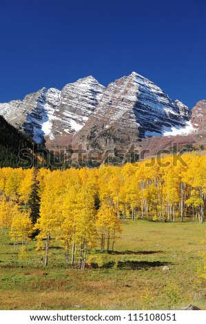 snow mountain in colorado with yellow aspen tree in autumn - stock photo