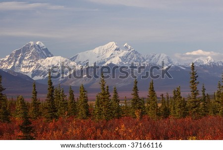 Snow mountain in Denali - stock photo