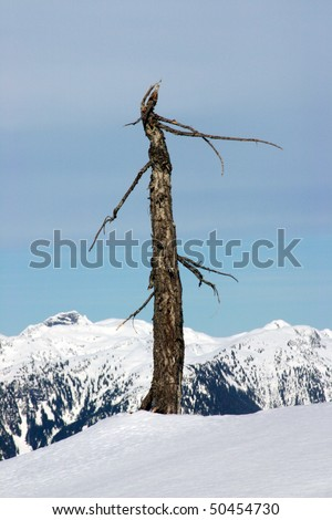 Snow mountain peak view. - stock photo