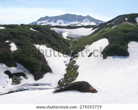 Snow mountain range, melting snow  and green plants - stock photo