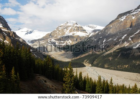 Snow mountains and forests in spring at columbia icefield area, jasper national park, alberta, canada - stock photo