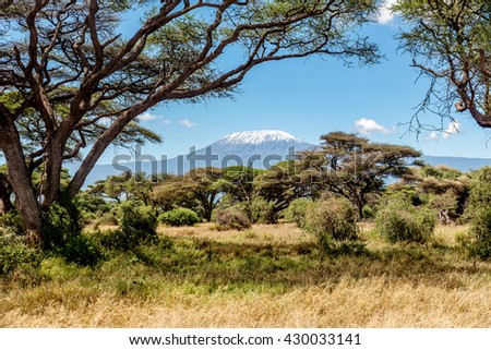 Snow on the top of the Mount Kilimanjaro in Amboseli - stock photo