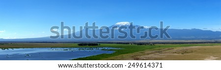 Snow on top of Mount Kilimanjaro in Amboseli - stock photo
