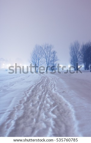 Snow path in a cold night
