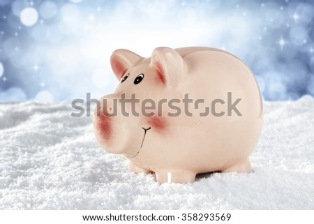 snow pig and sky  - stock photo