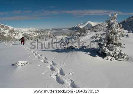snow shoeing in the Alps