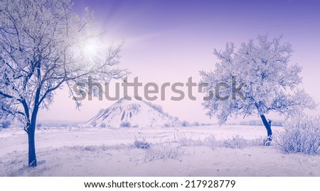Snow winter urban landscape with trees in a hoar frost and slagheap on a skyline - stock photo