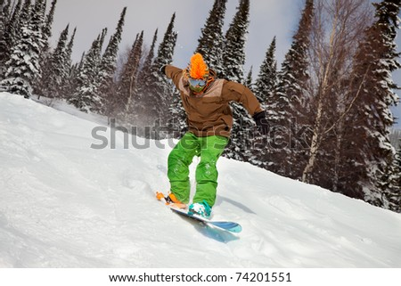 Snowboarder riding on snow-covered forest