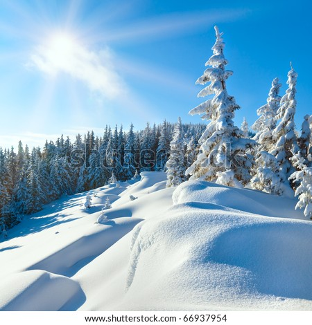 Snowdrifts on winter snow covered alp mountainside, fir trees on mountain hill top and sun shine glow in blue sky. Beautiful natural winter vacation hiking travel to nature destinations concept.