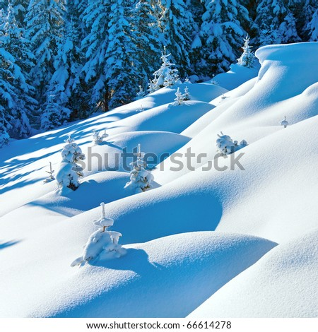 Snowdrifts on winter snow covered mountainside and fir trees on hill top - stock photo
