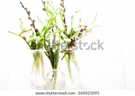 Snowdrops in the bottles, spring bouquets with shallow DOF - stock photo