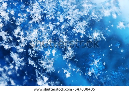 Snowfall close-up frozen ice crystals flying