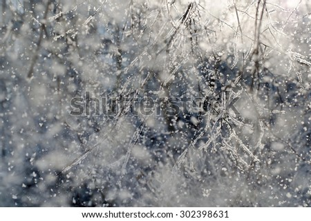 Snowfall on a winter day, selective focus with bokeh  - stock photo