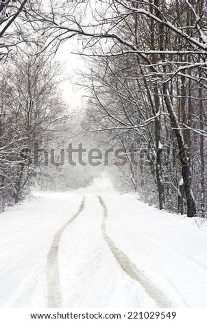 snowfall view on the country road  - stock photo