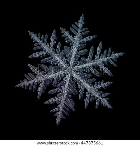 Snowflake isolated on black background: macro photo of real snow crystal, captured on glass surface. This is large fernlike dendrite snowflake with high detailed arms and very complex structure. - stock photo
