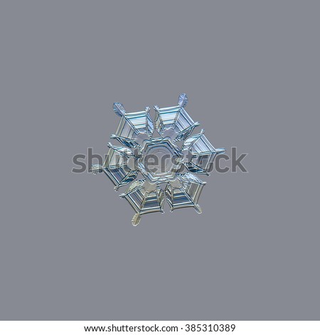 Snowflake isolated on uniform light grey background: real snowflake macro photo, captured on glass surface with LED back light. This is medium sized stellar dendrite snow crystal. - stock photo