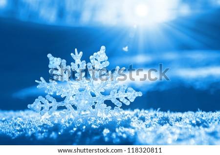 Snowflake light sunset - stock photo
