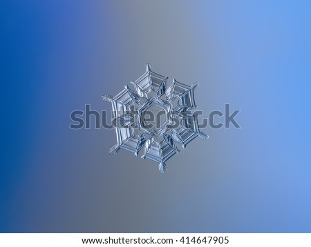 Snowflake on smooth blue-to-gray gradient background: macro photo of real snow crystal on glass surface with LED back light. This is medium size snowflake with amazing relief and symmetry.