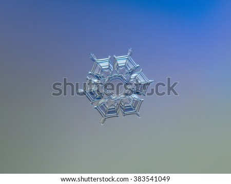 Snowflake on smooth gradient background: macro photo of real snow crystal on glass surface with LED back light. This is medium size snowflake of stellar dendrite type.