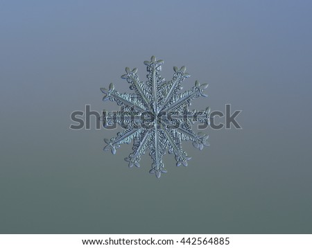 Snowflake on smooth gradient background: macro photo of real snow crystal on glass surface with LED back light. This is rare crystal with symmetrical structure and twelve spear-like branches. - stock photo