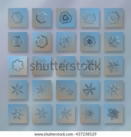 Snowflake photo collage in pale blue colors with 25 interesting snow crystals, arranged in grid of square tiles, revealing wide range of snowflake shapes: from simple plates to big stellar dendrites.