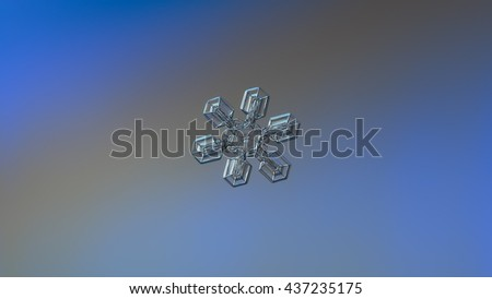 Snowflake photo on bright blue-gray gradient background. This is real snow crystal with broad arms, resembling duck feet or gecko's paw. Widescreen version with more background around snowflake. - stock photo