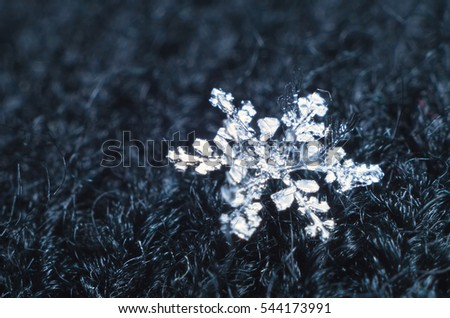 Snowflake under the microscope