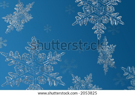 Snowflakes floating on a blue background - stock photo