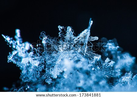 Snowflakes magnified, studio shot. - stock photo
