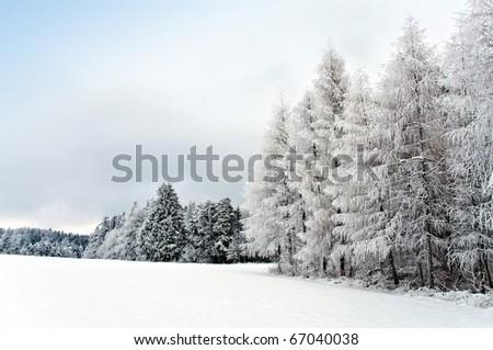 Snowie Landscape - stock photo
