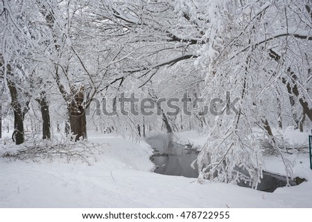 Snowing landscape in the park. High resolution and beautiful snow details