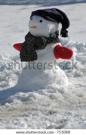 Snowman in Winter - stock photo