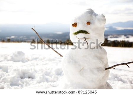 Snowman Made with Parts of Pine Tree - stock photo
