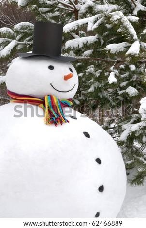Snowman smiling - stock photo