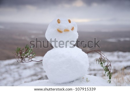 Snowman with peanuts for a face and heather for arms on mountain in the winter in the Scottish Highlands - stock photo