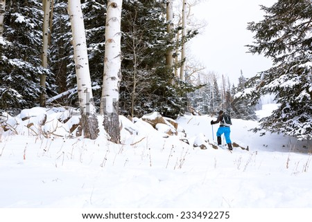 Snowshoeing Through Forest - stock photo