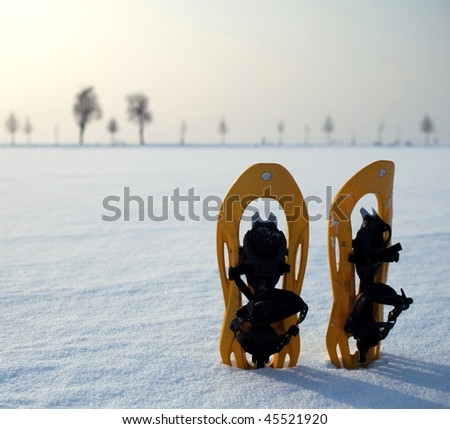 snowshoes in a snowy landscape on a lovely yet frosty winter day - stock photo