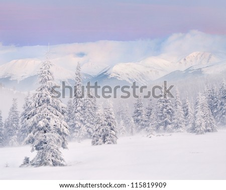 Snowstorm in the mountains. Winter sunrise - stock photo