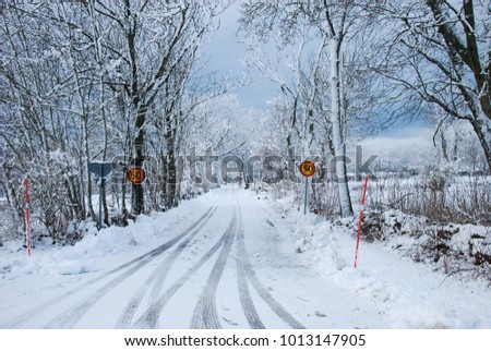 Snowy country road with speed limit road signs and snow stakes